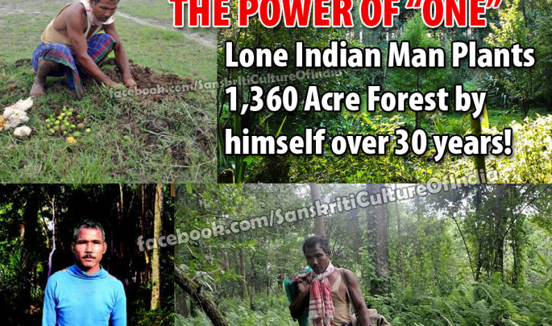 Lone Indian Man Plants 1,360 Acre Forest