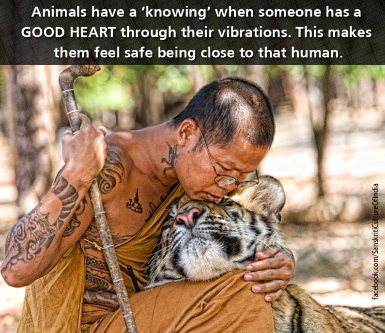 Animals have wisdom beyond our understanding!