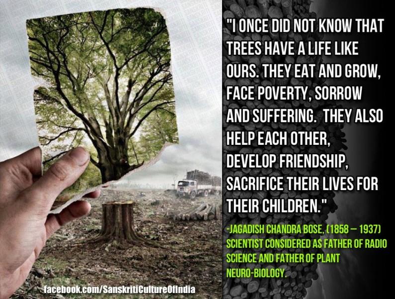 SAVE TREES – SAVE LIFE…