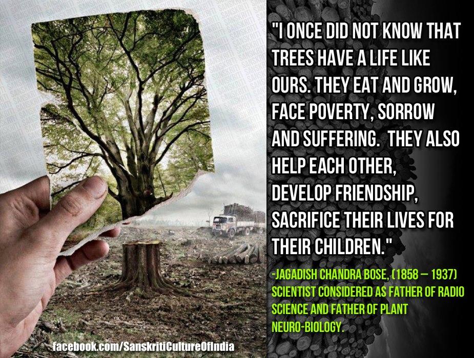SAVE TREES - SAVE LIFE..