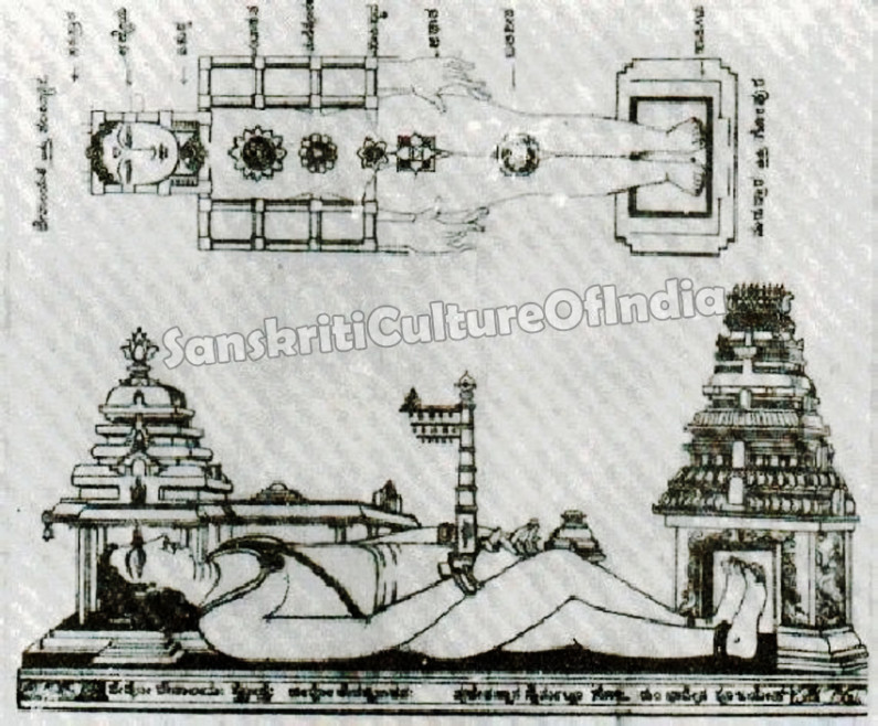 Hindu Temple and the Structure of Human Body