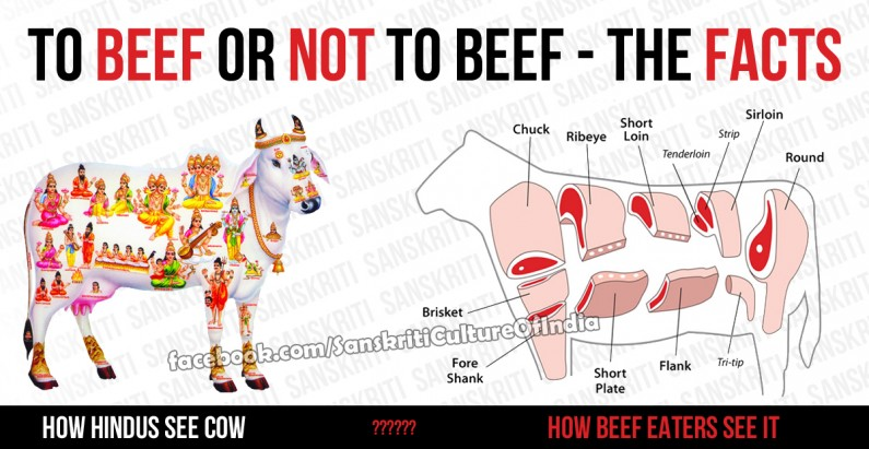To Beef Or Not To Beef