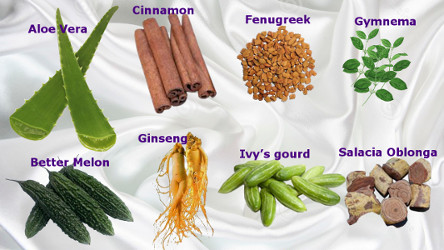 diabetes-herbs