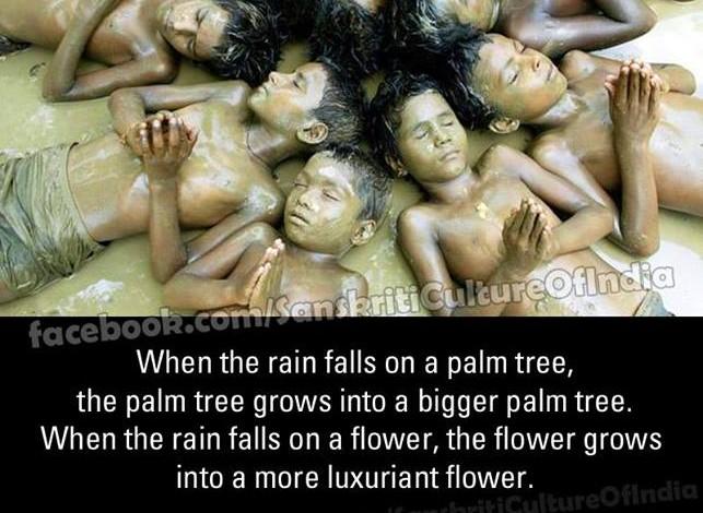 The Rain of Dharma