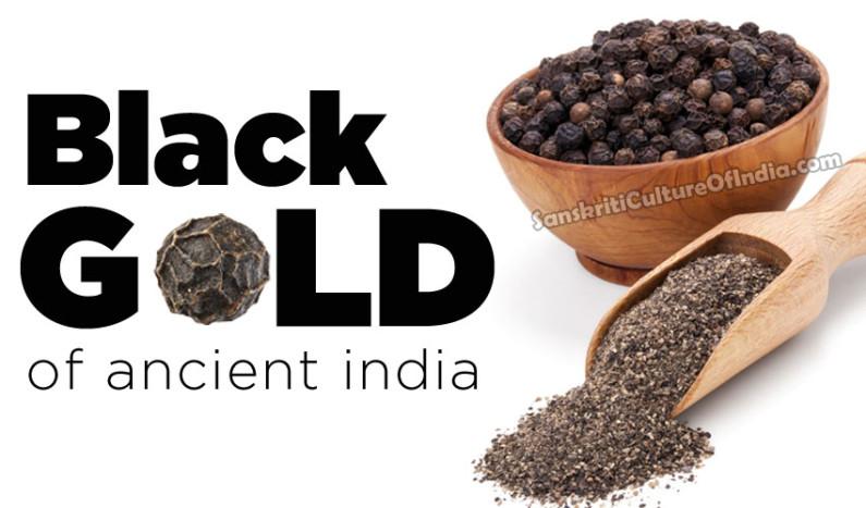Piper Nigrum:  Black Gold of Ancient India