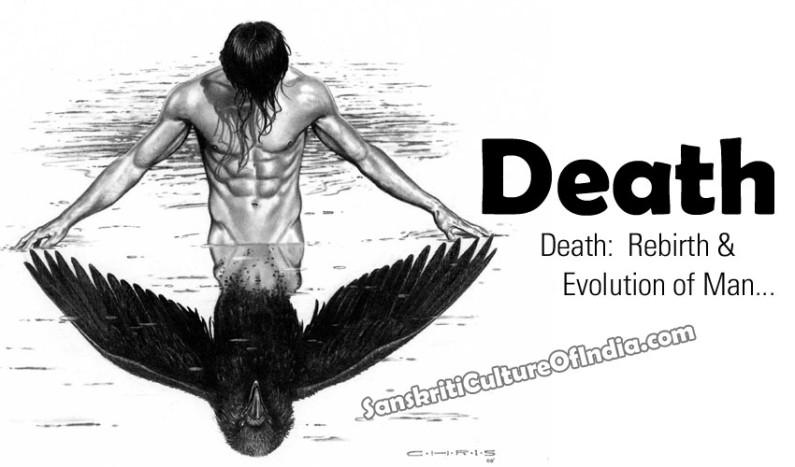 Death:  Rebirth & Evolution of Man