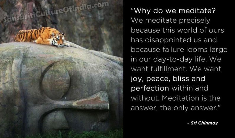 Why Do We Meditate ?