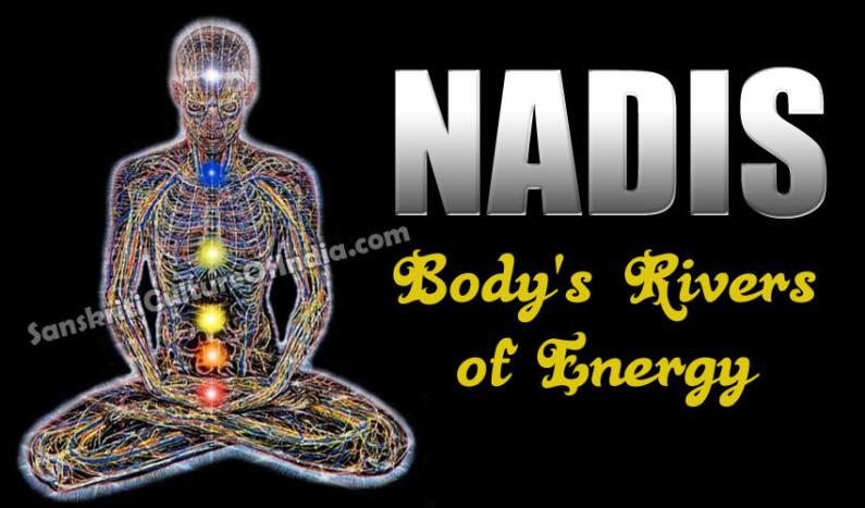 Nadis:  Body's Rivers of Energy
