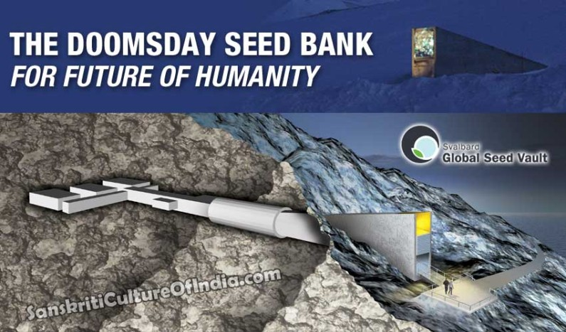 The Doomsday Seed Bank For The Future of Humanity