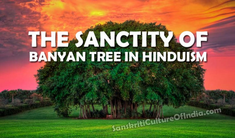 The Sanctity of Banyan Tree in Hinduism