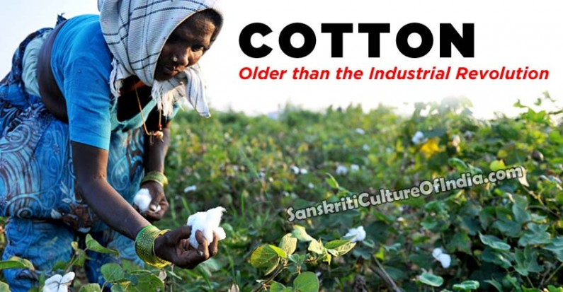 Cotton:  Older than the Industrial Revolution