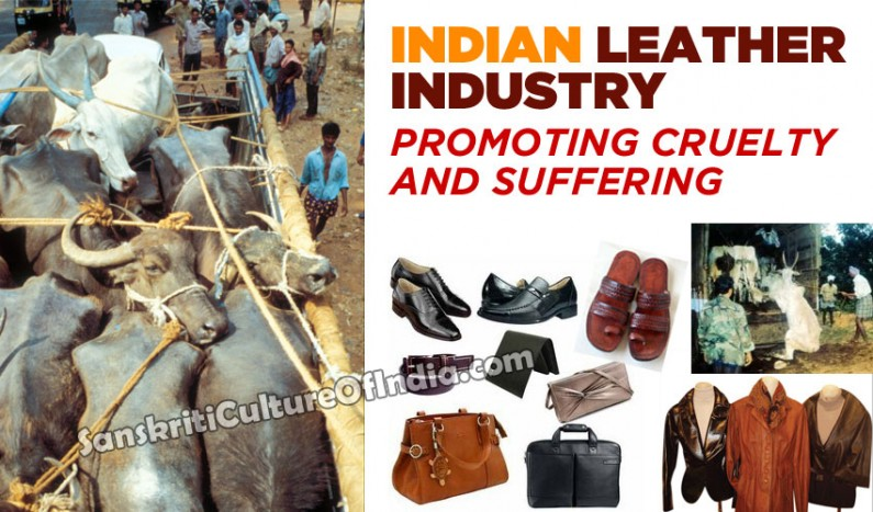Indian leather industry promoting animal cruelty and suffering
