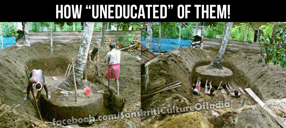 tree moved in kerala