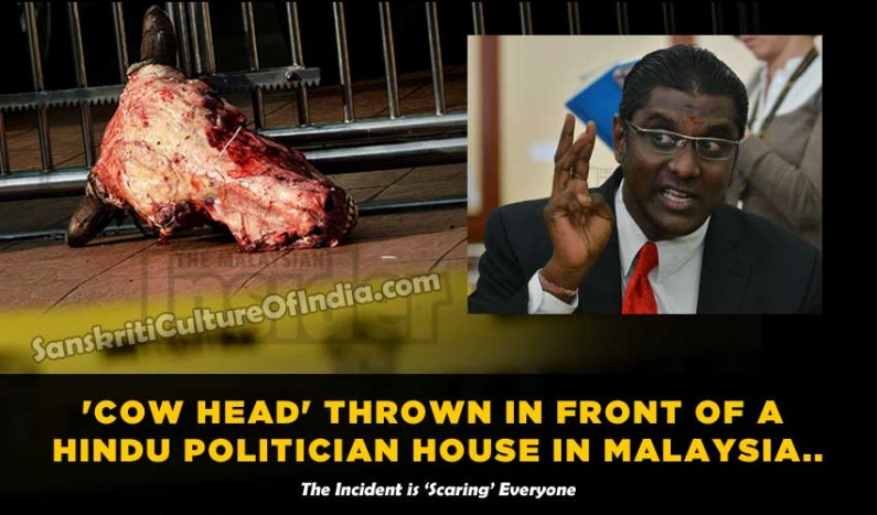'Cow Head' thrown in front of a Hindu Politician house in Malaysia