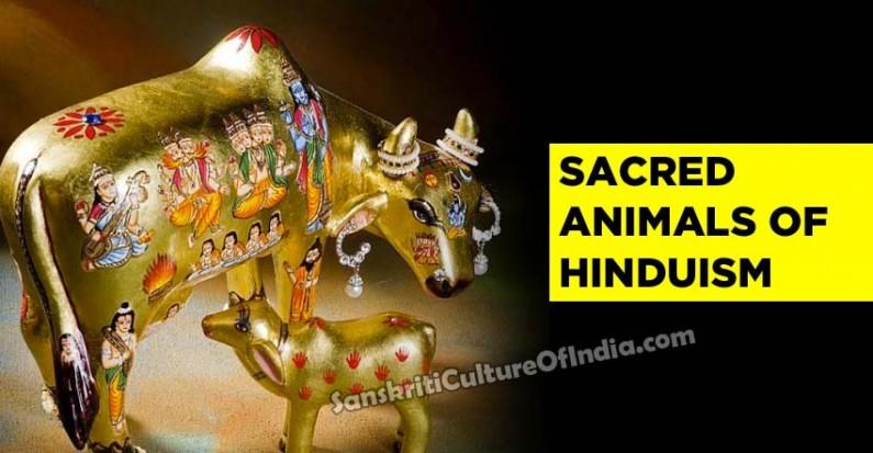 Sacred animals of Hinduism