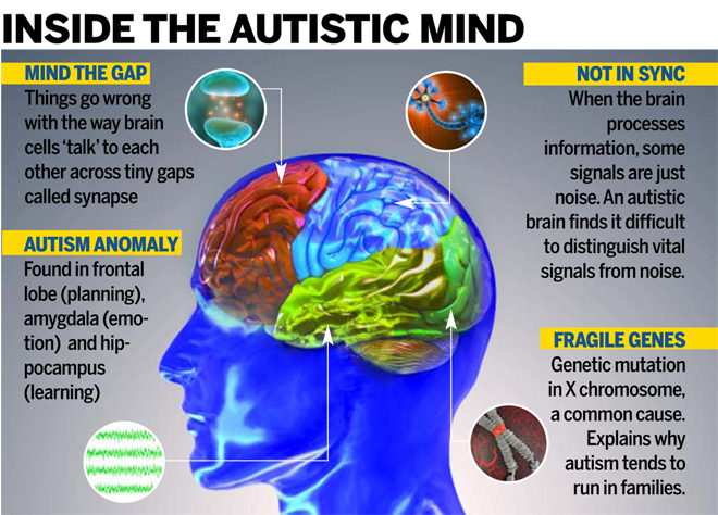 autisticmind2_110913122804