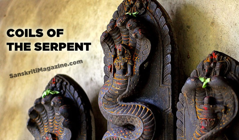 Coils of the serpent