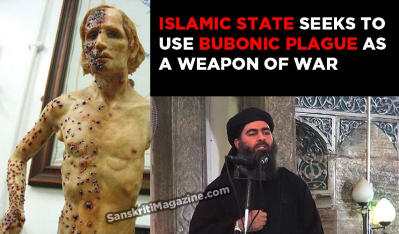 Islamic State seeks to use bubonic plague as a biological weapon of war