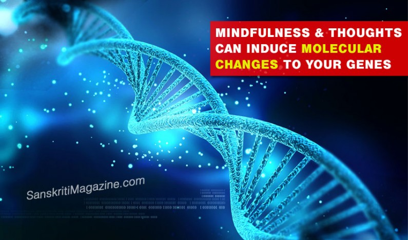 Mindfulness & thoughts can induce molecular changes to your genes