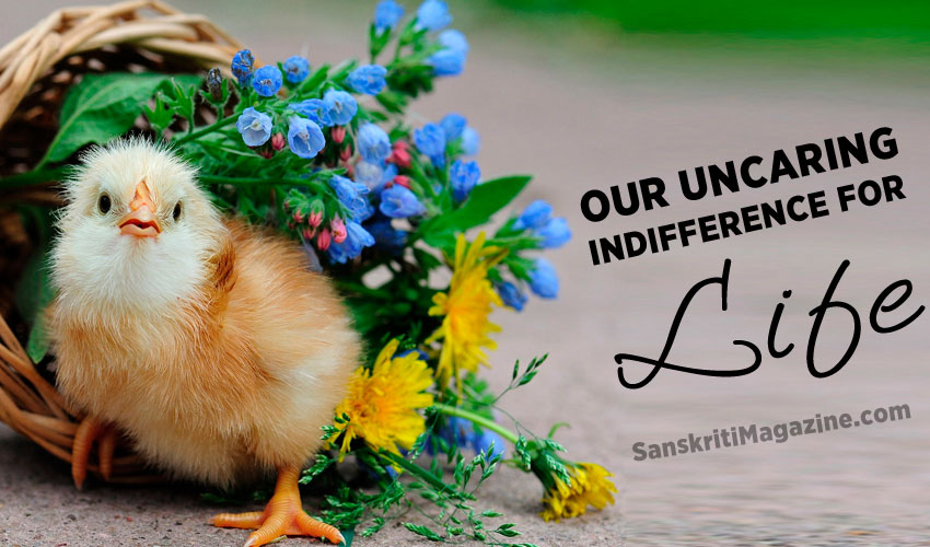 Our uncaring indifference for life