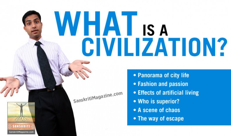 What is Civilization?