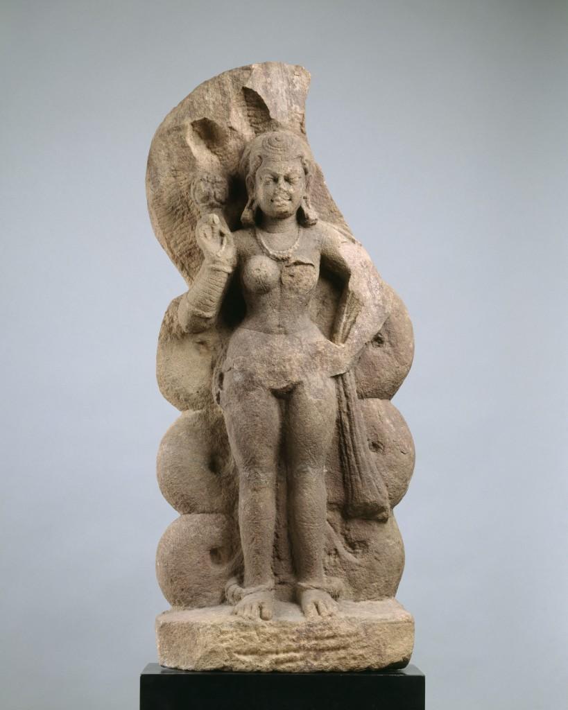Nagini (Serpent Queen or Consort of Nagaraja