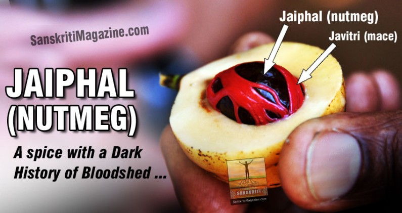 Jaiphal (Nutmeg): A spice with a dark history of bloodshed