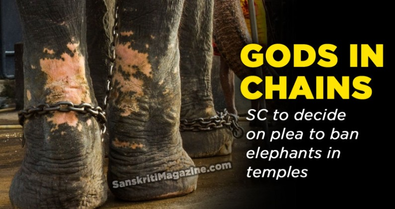 Gods in chains: SC to decide on plea to ban elephants in temples