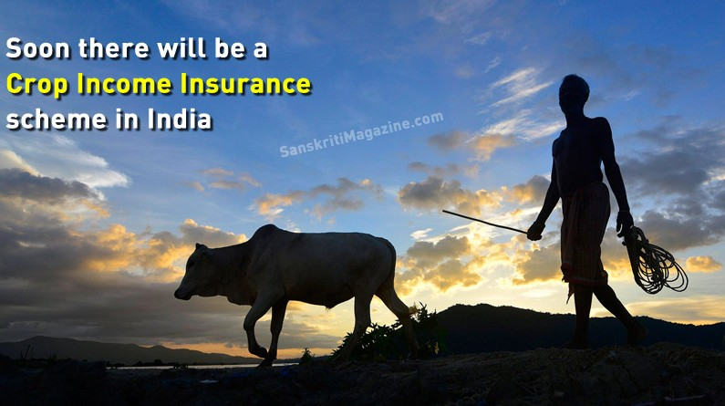 Soon there will be a Crop Income Insurance scheme in India