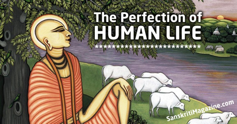 The Perfection of Human Life