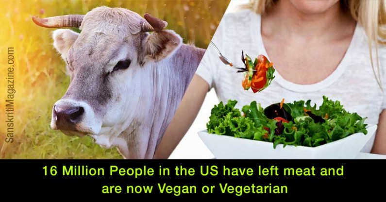16 Million People in the US have left meat and are now Vegan or Vegetarian