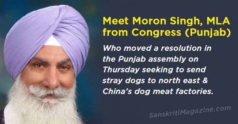 Ajit Singh Mofar, MLA wants to send stray dogs to China's dog meat factories