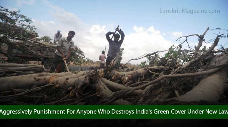 Indian Environment Ministry Set To Aggressively Punish Anyone Who Destroys India's Green Cover With New Law