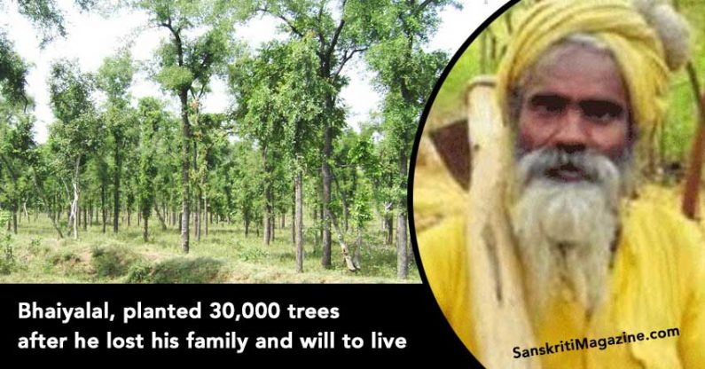 Bhaiyalal, planted 30,000 trees after he lost his family and will to live