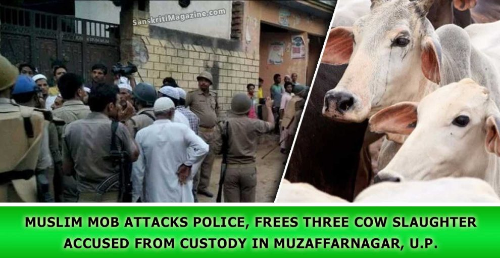 Muslim-Mob-attacks-police,-frees-three-cow-slaughter
