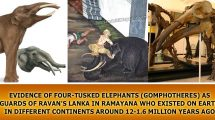 Evidence-of-FOUR-TUSKED-elephants-(Gomphotheres)-in-ramayan