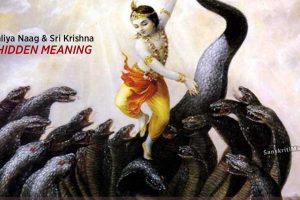 The-Kaliya-Naag-and-Sri-Krishna-–-The-Hidden-Meaning
