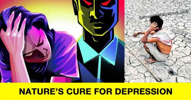 Nature's Cure for Depression