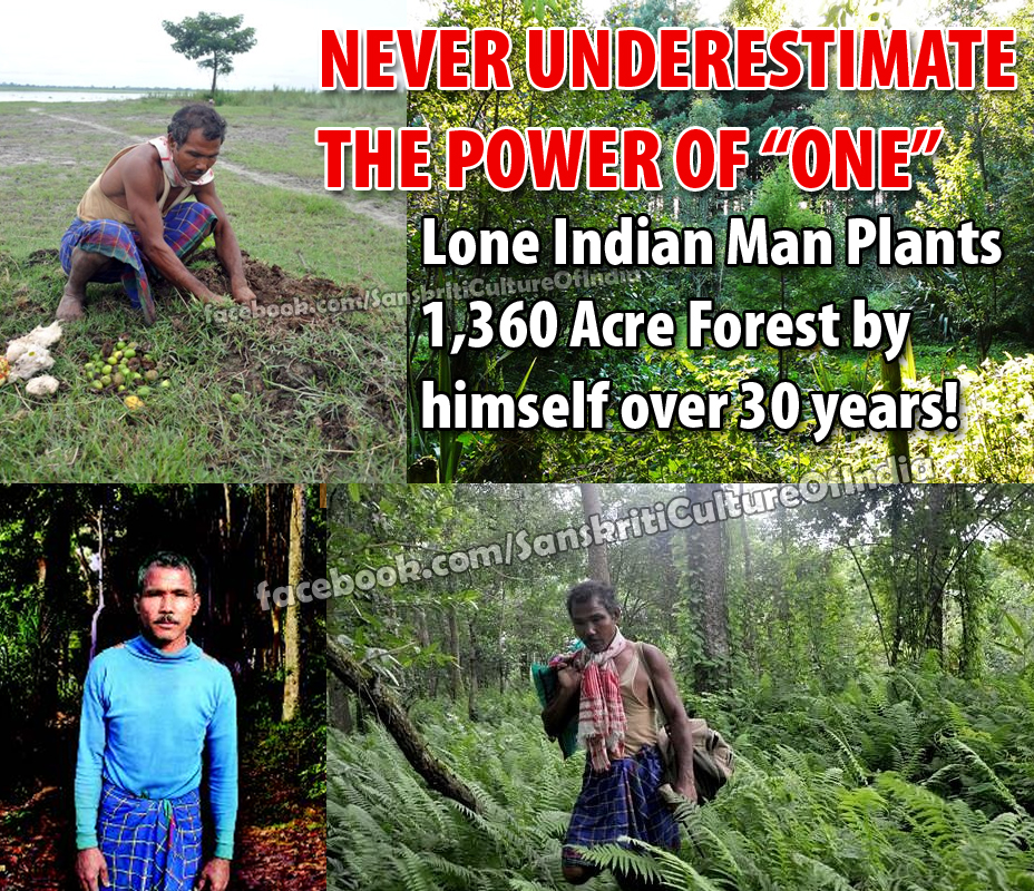 Lone Indian Man Plants Forest
