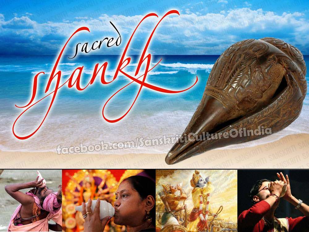 Religious & Scientific Significance of a Conch (Shankh)