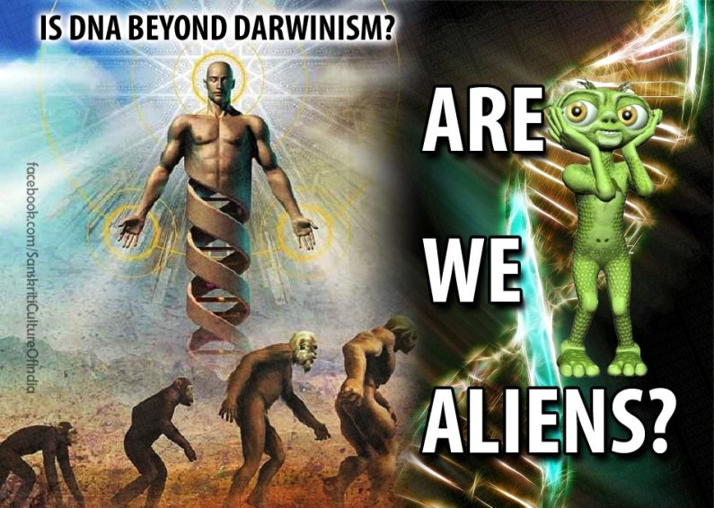 Is DNA Beyond Darwinism?