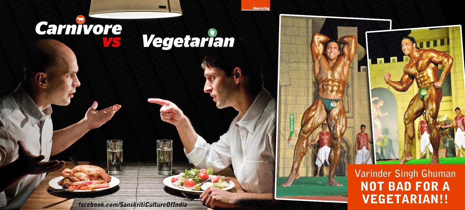 Carnivore vs. Vegetarian