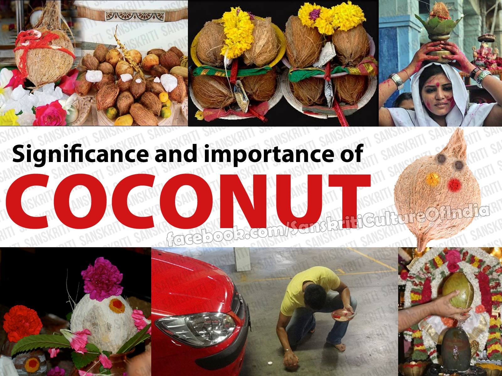 Importance and Significance of Coconut!