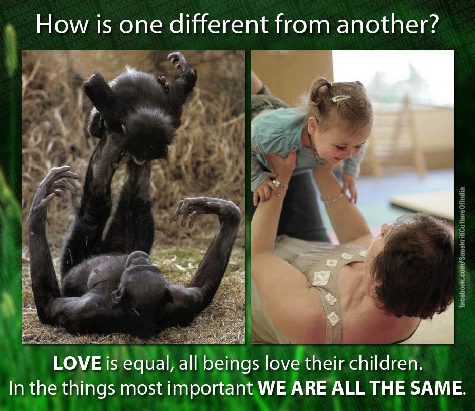 We are all the same...
