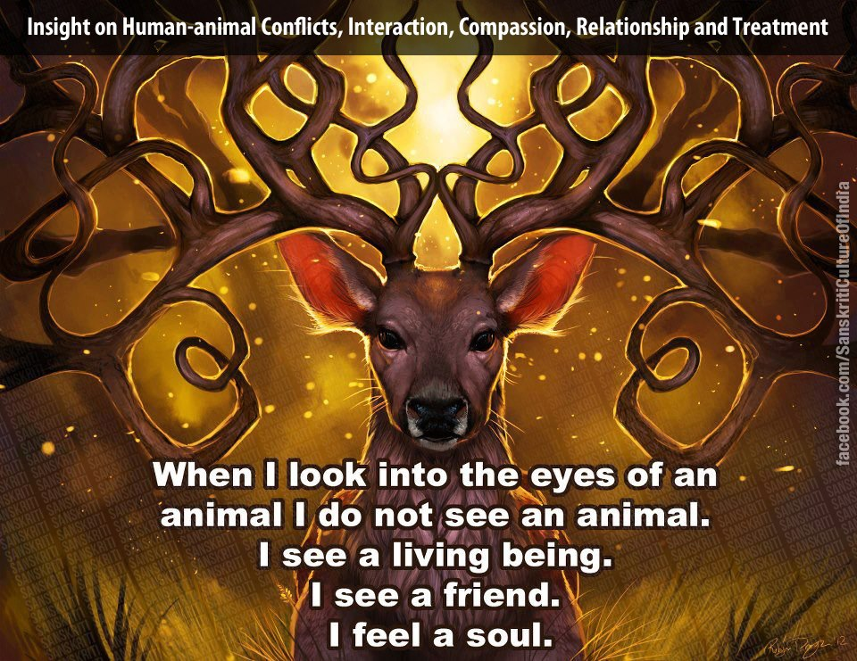 Earth - Sanctity of all species