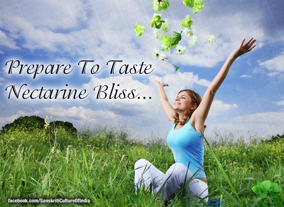 Prepare To Taste Nectarine Bliss