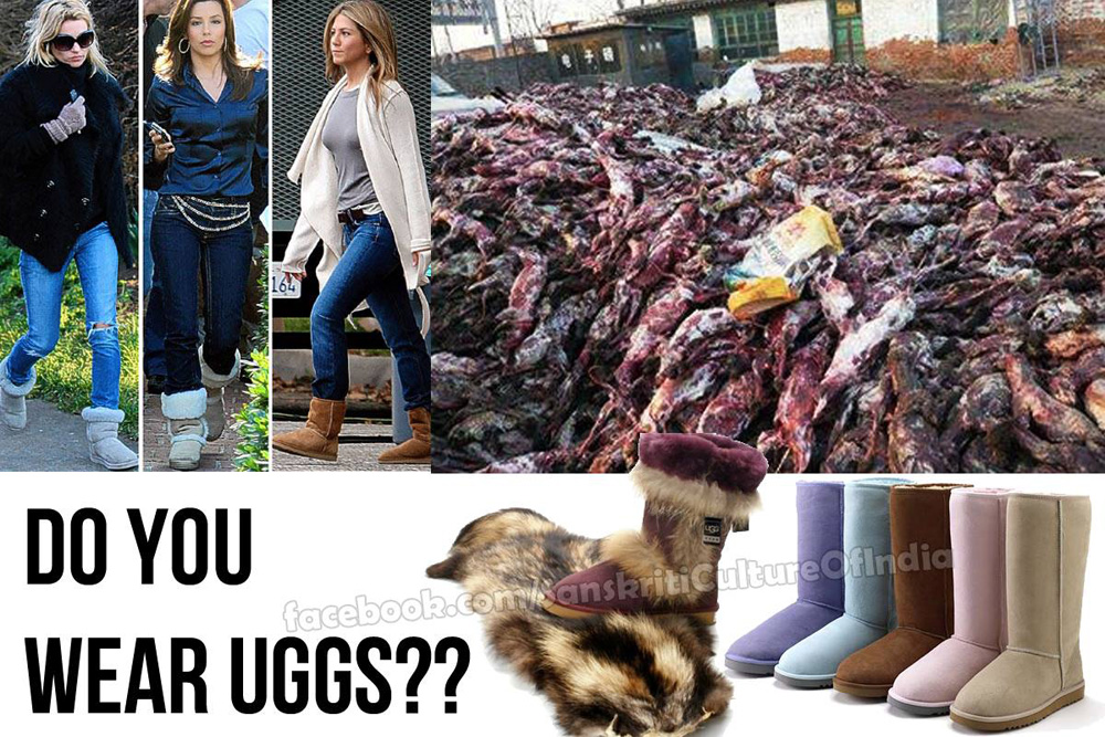 Do you wear UGGS?