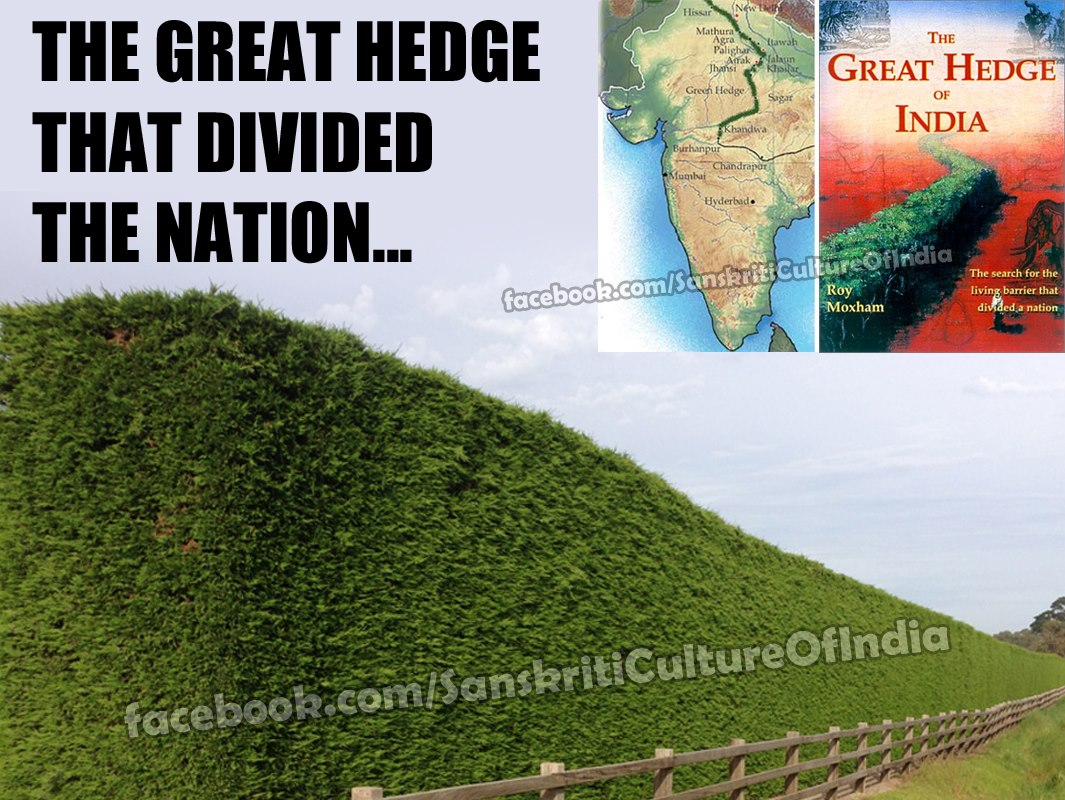 Hedge that divided the India