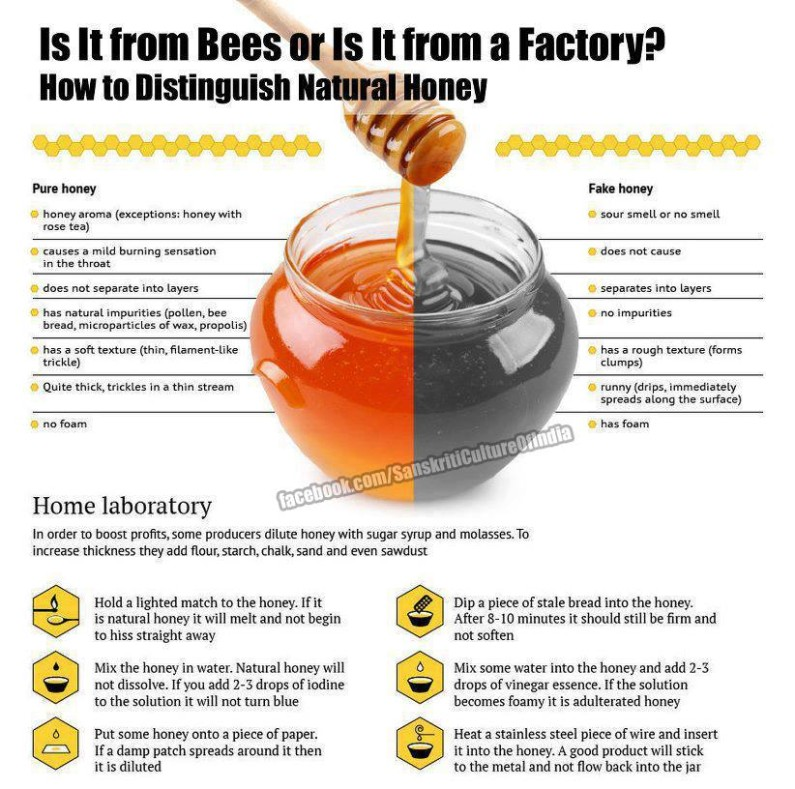 Honey – REAL or FAKE!?