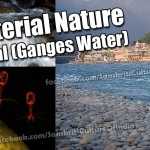 Antibacterial Nature of Ganga Jal (Ganges Water)